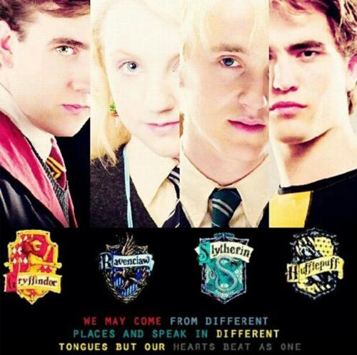 Neville, Luna, Draco, and Cedric