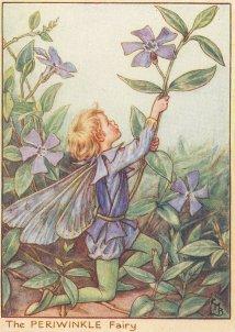 Periwinkle Fairy