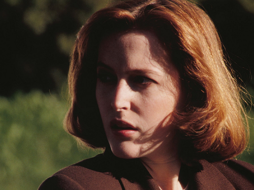 The X-Files wallpaper with a portrait called Scully