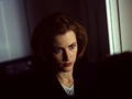 the-x-files - Scully wallpaper