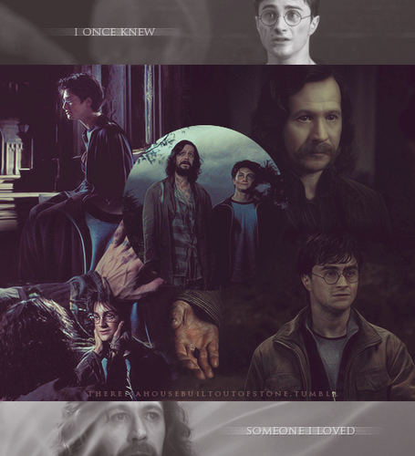 Sirius Black iconen