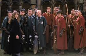 Slytherin and Gryffindor Quidditch Teams