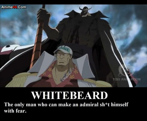Edward Whitebeard Newgate achtergrond with anime entitled The Aura of a legendary man