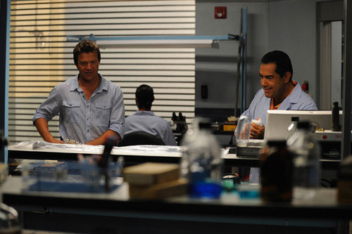 The Glades (1x13) Breaking Eighty
