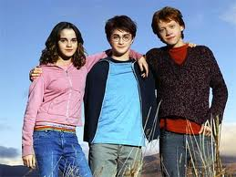 The Golden Trio - harry-potter Photo