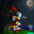 The Unknown Soldier - shadow-the-hedgehog fan art