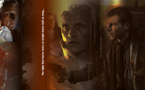 Blade Runner wallpaper titled Twice as bright, half as long