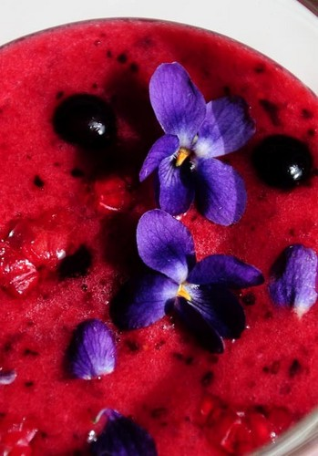 Violet Drink - food Photo