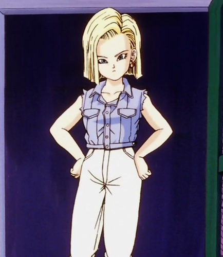 Dragonball z girls only images android 18 wallpaper and background photos 30908566 - Dragon ball zc 18 ...