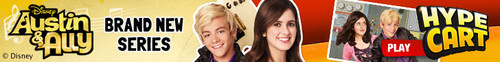 austin and ally banner