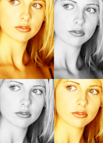 buffy the vampire slayer♥ - buffy-the-vampire-slayer Fan Art