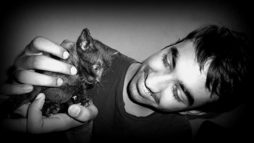 rahul pet kitty