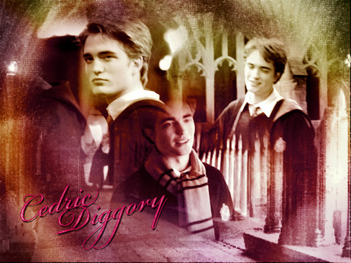 rob as cedric in hp <3