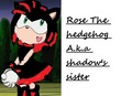 rose the hedgehog - sonic-girl-fan-characters fan art