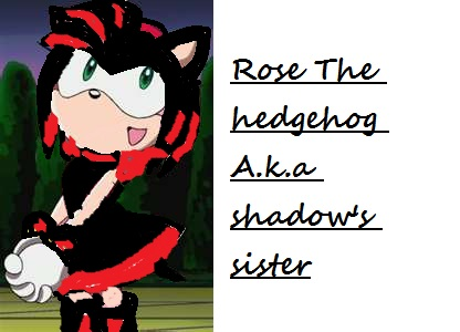 rose the hedgehog