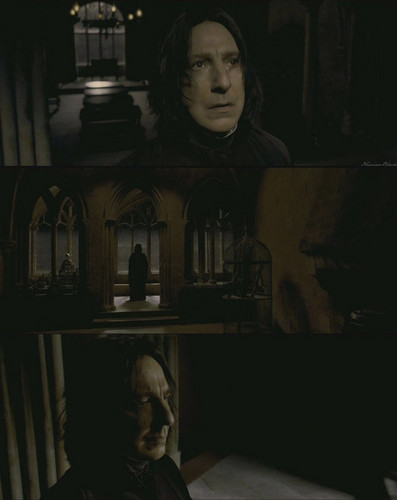 snape - severus-snape Photo
