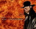 the taker - undertaker photo