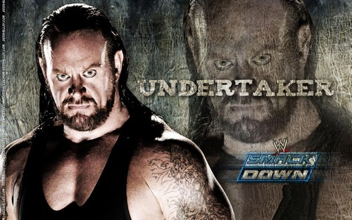 Undertaker achtergrond called the taker