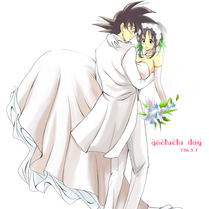 Chi Chi (Dragon Ball) images wedding day HD wallpaper and background ...