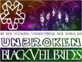  BVB flag  - rakshasas-world-of-rock-n-roll wallpaper