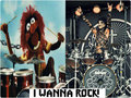★ CC & Animal ☆  - rakshasas-world-of-rock-n-roll wallpaper