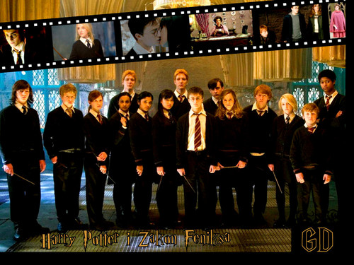 ~Harry Potter and the Order of the Phoenix~