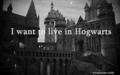 ~Harry Potter~ - sharon-and-harshila photo