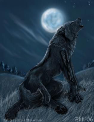 """Howling in at a Full Moon"""