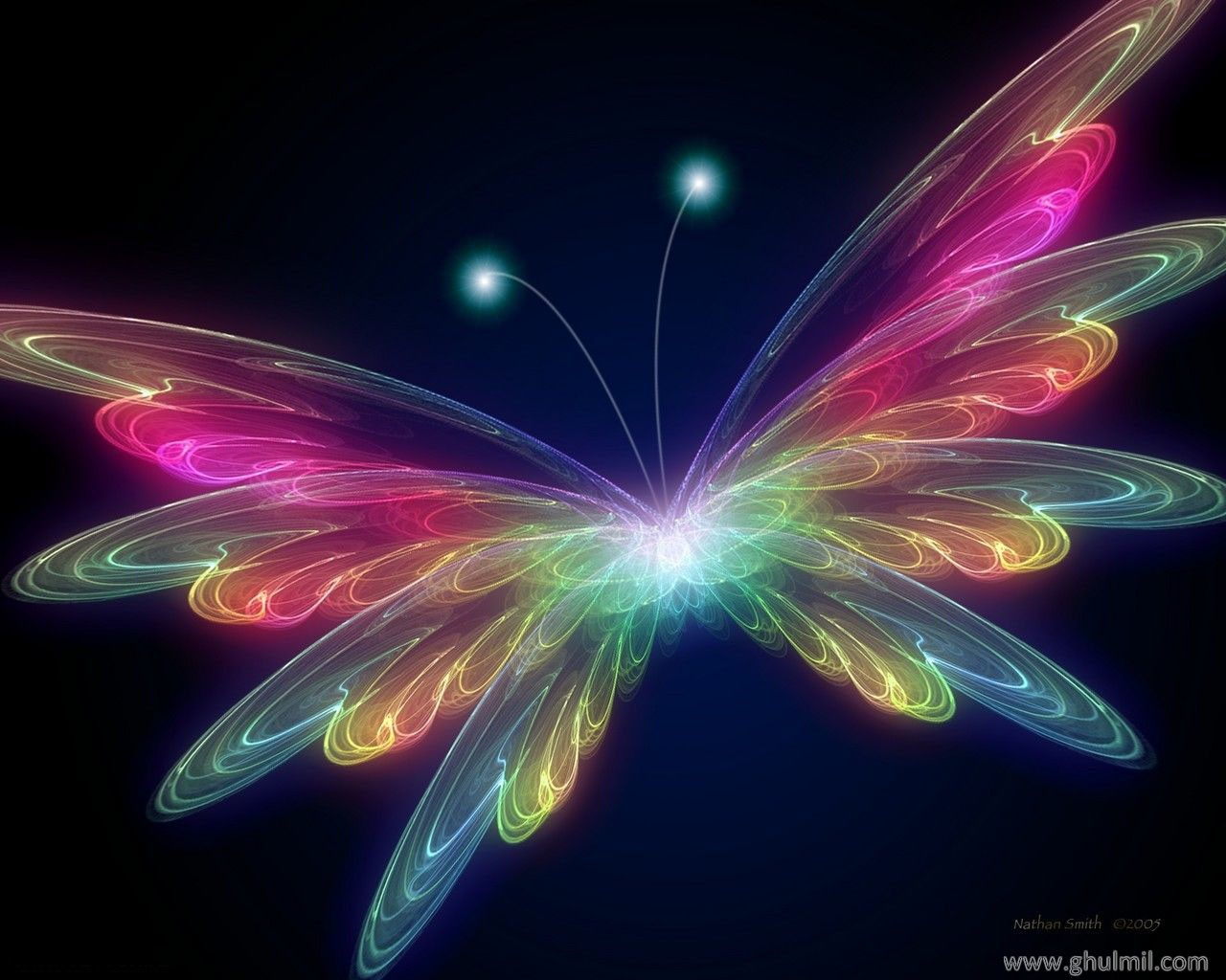 Neon Butterfly Desktop Wallpaper