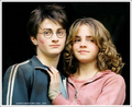 All from HP - harmonyforever photo