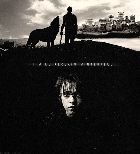 Arya Stark wallpaper possibly with a herder and a lippizan called Arya