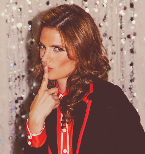 Beautiful Stana - castle Photo
