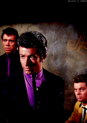 West Side Story wallpaper with a business suit, a suit, and a dress suit entitled Bernando and Riff
