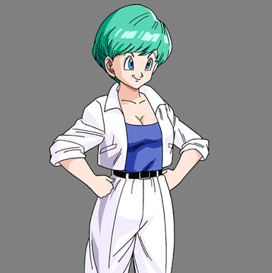 Bulma Briefs wallpaper possibly containing anime entitled Bulma