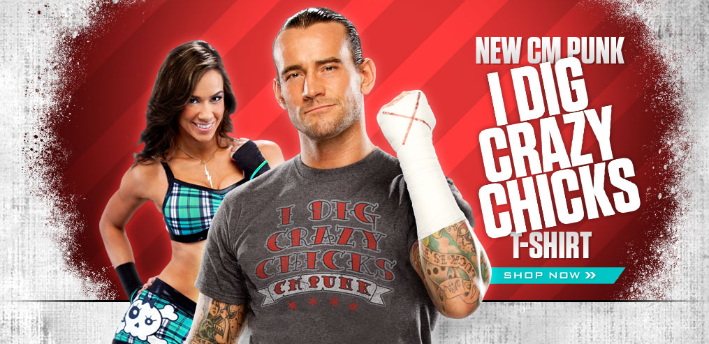 WWE CM Punk and AJ Lee