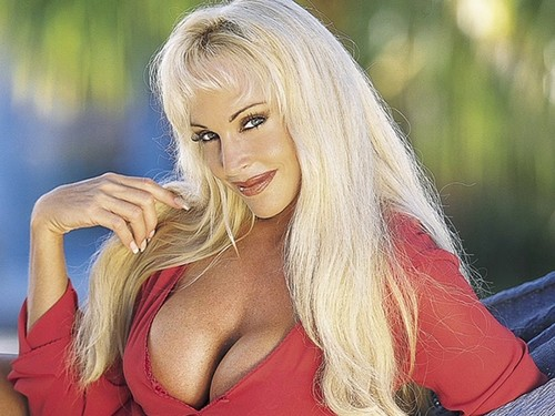 Former WWE Diva... Debra پیپر وال containing attractiveness and a portrait entitled Debra In Hedonism