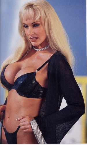 Former WWE Diva... Debra پیپر وال containing attractiveness and a brassiere titled Debra In Hedonism
