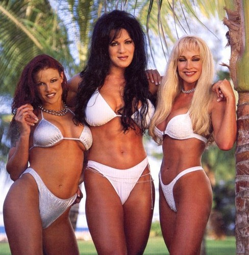 Former WWE Diva... Debra پیپر وال with a bikini entitled Debra In Hedonism