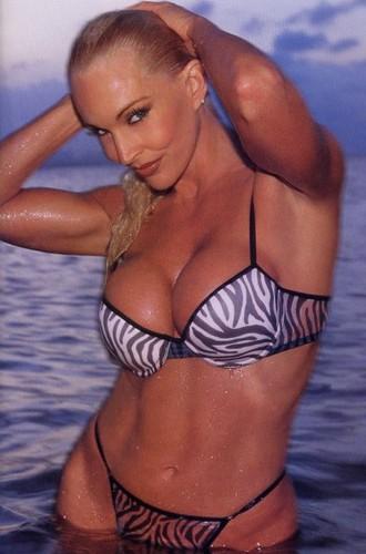 Bekas Diva WWE... Debra kertas dinding with a bikini called Debra In Hedonism