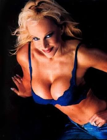 Former WWE Diva... Debra پیپر وال containing attractiveness and skin entitled Debra - Raw Magazine 2002