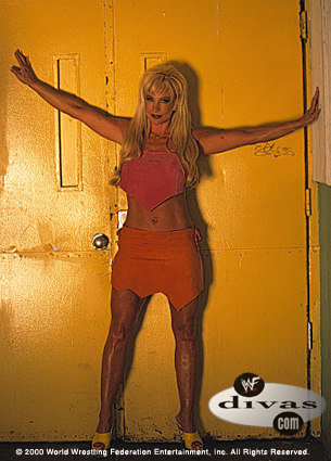 anterior diva wwe...debra fondo de pantalla possibly containing bare legs and a leotard entitled Debra