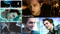 Edward - twilighters wallpaper