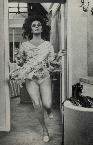 Elizabeth Taylor karatasi la kupamba ukuta containing bare legs and a hip boot entitled Elizabeth Taylor