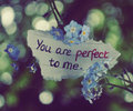 Everything Is Perfect Just The Way It Is♥
