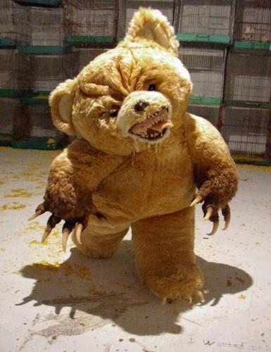 Evil chịu, gấu