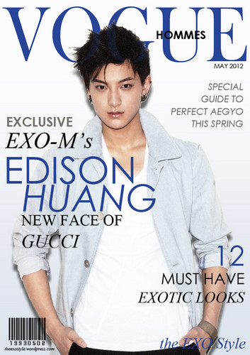 Tao wallpaper with a portrait titled Fake Vogue Cover