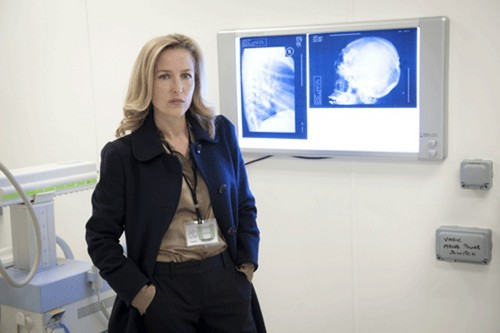 Gillian Anderson - The Fall Promotional foto