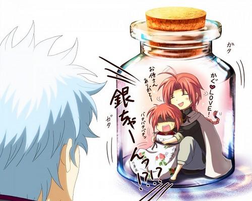 Gintoki,Kagura & Kamui o.0