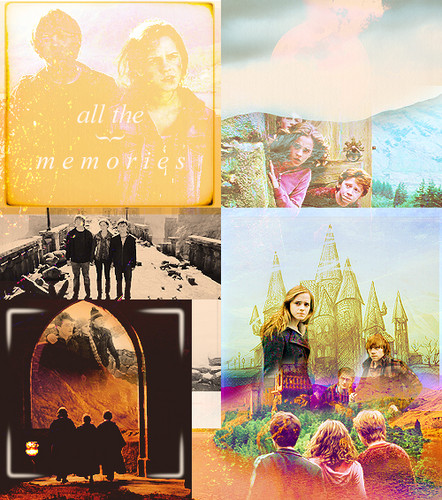 Harry, Ron and Hermione images Harry, Ron and Hermione wallpaper and background photos