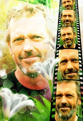 Hugh Laurie wallpaper with a totem pole called Hugh Laurie